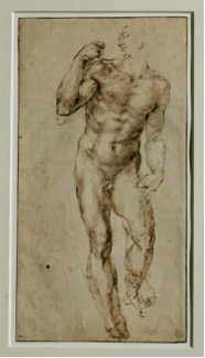 Fig. 2) Michelangelo, study of a male nude, 1502-1506