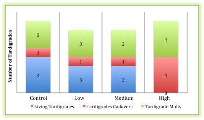 Comparative representation of the tardigrade population after two weeks, at the conclusion of the experiment