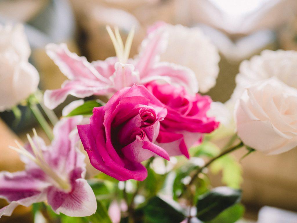 decorative image: pink flowers