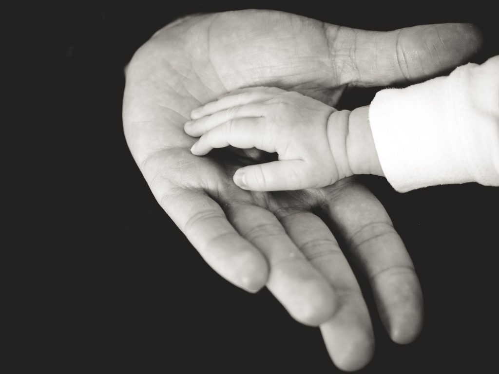 decorative image: child and parent hands photography