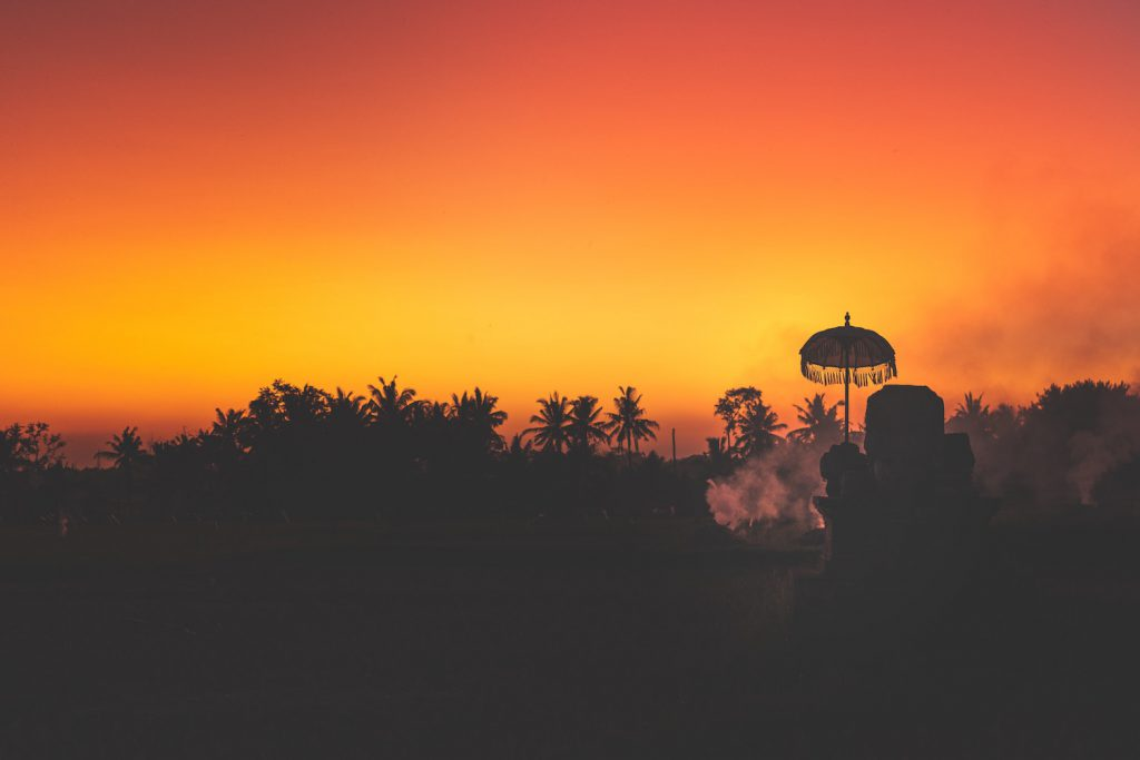 decorative image: treeline at sunset