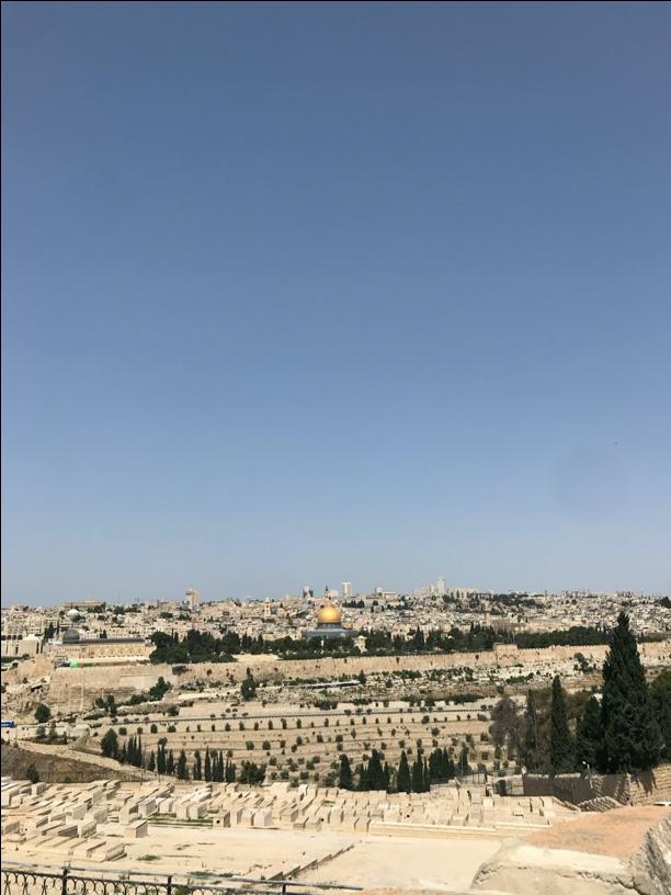 Israel snapshot